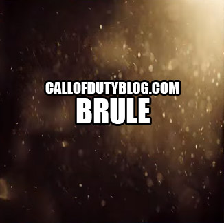 black-ops-3-weapon-camo-brule