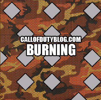 black-ops-3-weapon-camo-burning
